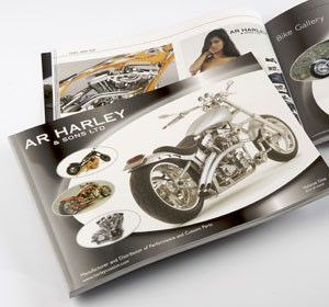 Previous<span>Harley Davidson<br>Brochure</span><i>&rarr;</i>