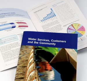 Next<span>Southern Water<br>Brochure</span><i>&rarr;</i>